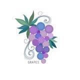 Winogrono wiązka z z liśćmi Obraz Stock