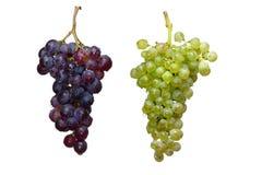 Winogrono winograd dwa Zdjęcie Royalty Free