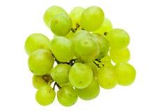 winogrono zieleń zdjęcie royalty free