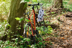 Winora-Fahrrad im Wald Lizenzfreie Stockfotos