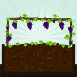 Winorośl i kompost ilustracja wektor