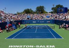 Winston-Salem Open 2013 Stock Foto