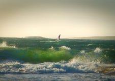 Winsurfer sur l'eau orageuse Photographie stock libre de droits