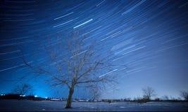Wintar stjärnor Arkivbilder