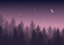 Winter night pine forest with sky with stars and moon. christmas theme. new year weather. background stock photography