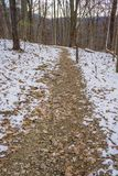 A Winter's Hiking Trail Royalty Free Stock Image