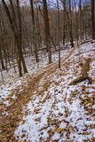 A Winter's Hiking Trail - 2 Stock Images