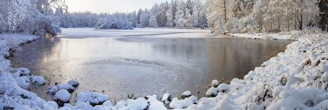 Winter湖全景 免版税库存照片