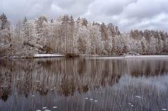 Winter湖和房子 免版税库存图片