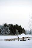Winter湖和森林 免版税库存照片