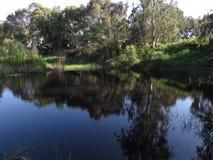 Winter湖霍隆,以色列 库存图片