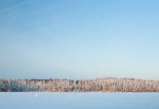 Winter湖风景在芬兰 免版税图库摄影