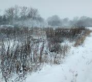 winter сельский Стоковые Изображения