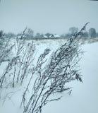 winter сельский Стоковые Фото