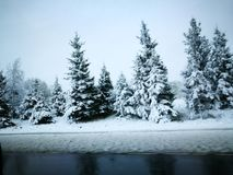 Winter& x27; сказ s Стоковые Фото
