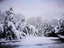 Winter& x27; сказ s Стоковые Изображения RF