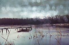 Winter湖 库存照片