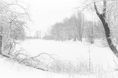 Winter湖 免版税库存图片