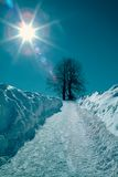 Winter. In Slovakia royalty free stock images