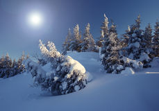 Winter. A frosty and sun day is in mountains Stock Photos