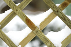 Winter. Cold winter in the garden Stock Image