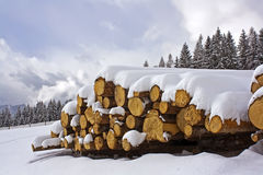 Free Winter Royalty Free Stock Image - 12935766