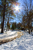 Winter. Landscape a sunny day Royalty Free Stock Photography
