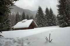 Free Winter Stock Image - 1494061