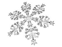 Winter. 3D-modelled snowflake related to notions such as winter, purity and christmas Stock Photos