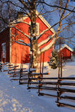 Winter. A cold winter day in the north part of Sweden Royalty Free Stock Image