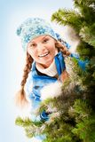 In winter Stock Image