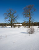 Winter. Snow cold outdoors scene Royalty Free Stock Photos