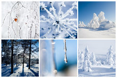 Winter Stock Image