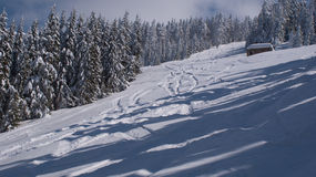 Winter. This is a part of the B ski track in the Parang Mountains, Romania Stock Photos