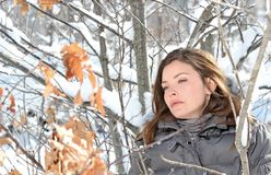 Winter. Women in nature during winter Royalty Free Stock Photos