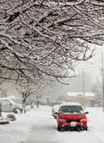 Winter. Urban landscape, with snow-covered tree branches framing the photograph on the top Stock Photography