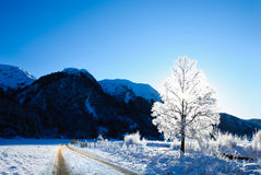 Winter. A road through beautiful winter landscape in Norway Stock Images