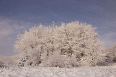 Winter. At mountains beskid poland Royalty Free Stock Images