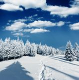 Winter Stockfoto