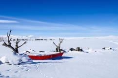Winter湖 免版税图库摄影