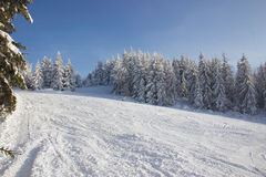 Winter. At mountains- beskid -poland Stock Photography