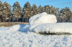 Winter. lizenzfreies stockbild