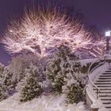 Winter night. Tonemapped  high dynamic range image Royalty Free Stock Image