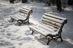 Winter. Tho benches covered with snow Royalty Free Stock Photography