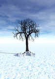 Winter, 3d scene with lonely tree stock images