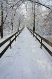 Winter Stockbilder