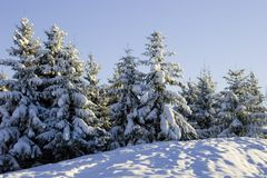 Winter. Background possible to use for printing and project Royalty Free Stock Photos