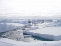 Winter. Landscape Stock Image