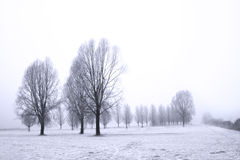 Winter. A foggy day in winter stock image