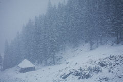 Winter. In the mountains, with hut and forest under snow Royalty Free Stock Image